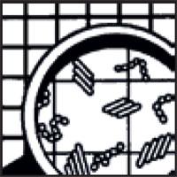 germi-batteri-lente-ingrandimento-icona-raro-industria-detergenti-matera-basilicata